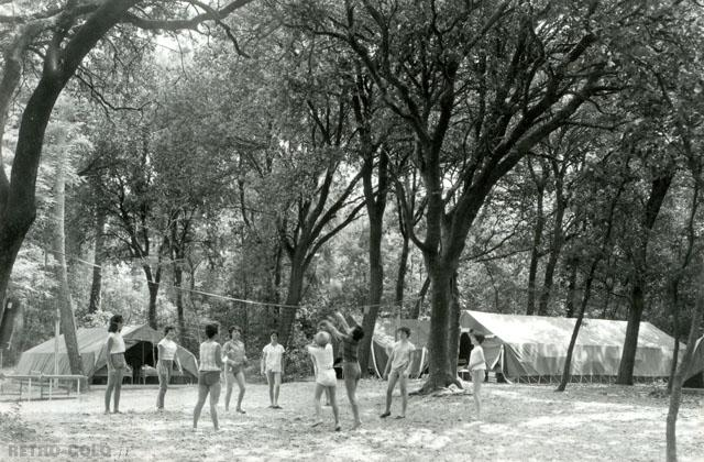 Une partie de volley - Colonie de Vacances à Saint-Georges-de-Didonne